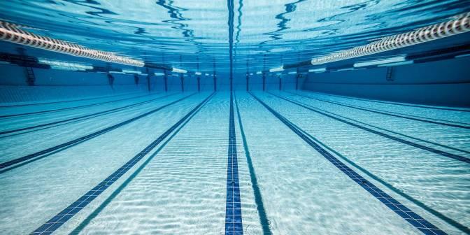Swimming Escapade!